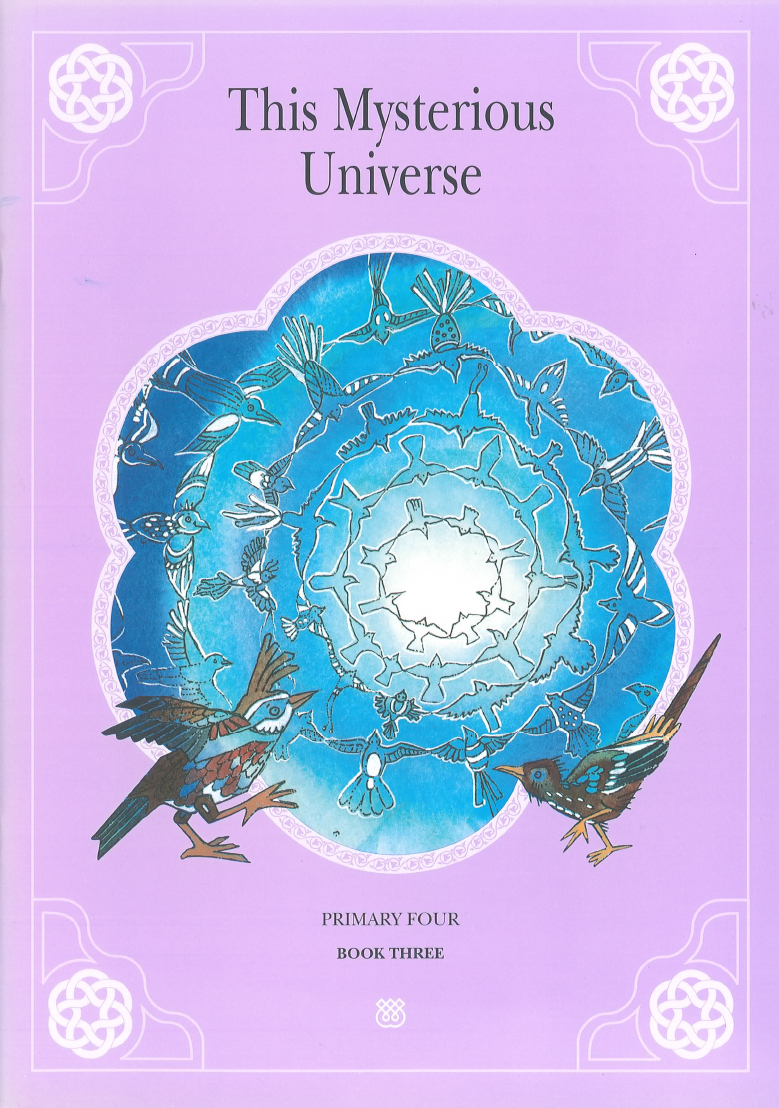 This Mysterious Universe seeks to acquaint children with basic ideas related to the intellectual and spiritual aspects of their faith. The book attempts to make children aware of the different levels of meaning that open up to them when they reflect upon the mysteries hidden in the everyday world around them.